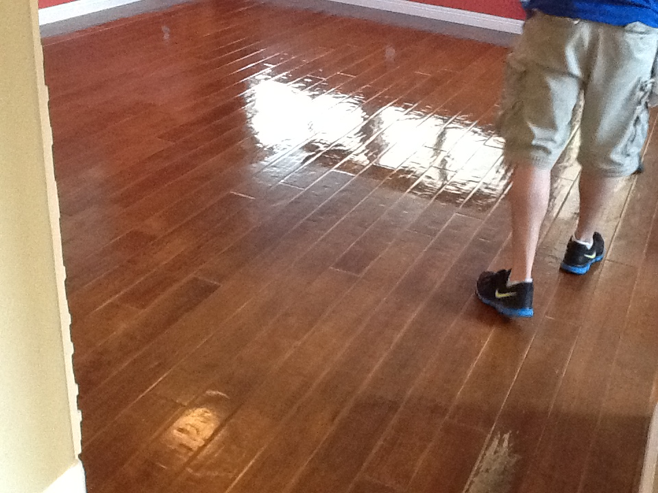 Wood floor cleaning and refreshing using the bridgepoint for Hardwood floors dull after cleaning